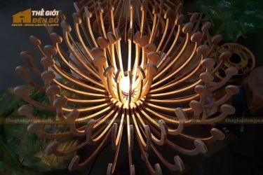 Thế Giới Đèn Gỗ - Đèn gỗ trang trí hải quỳ