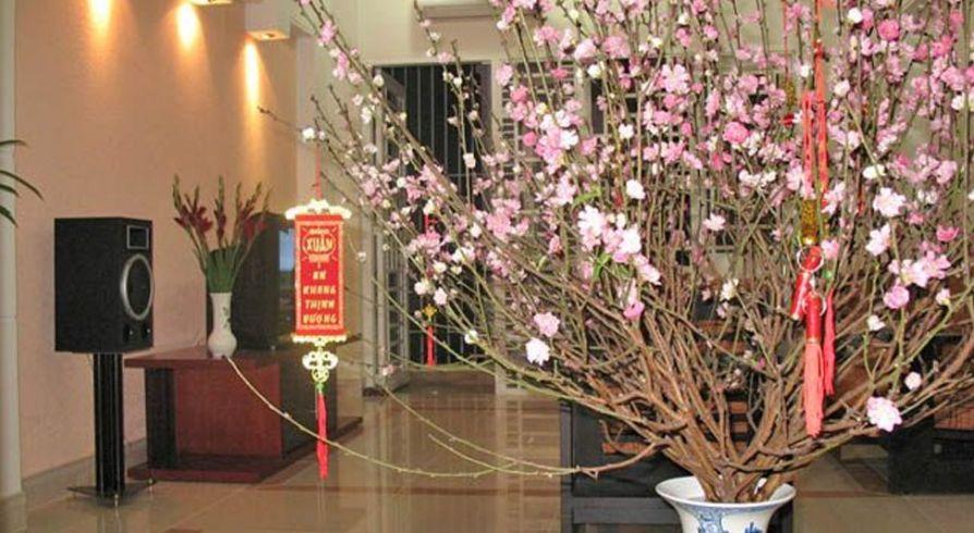 Thế Giới Đèn Gỗ - 7 vật dụng trang trí tết giúp nhà đẹp và may mắn hơn