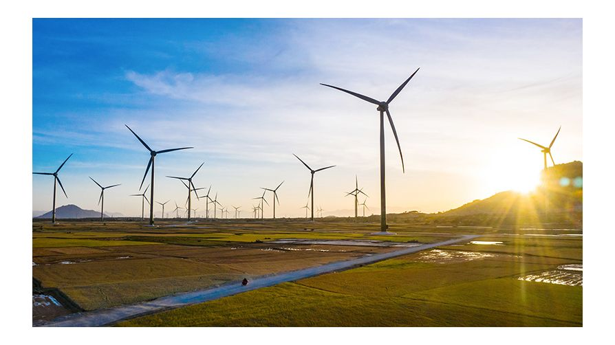 Thế Giới Đèn Gỗ - Dự án điện gió trung nam ninh thuận